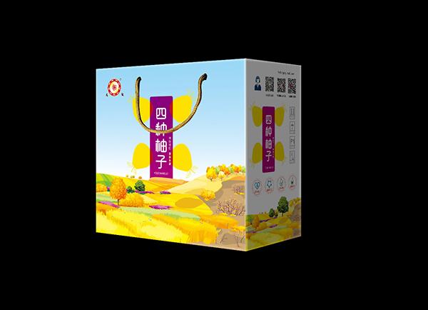 四种蜜柚礼盒版面_2974933_k68威客网